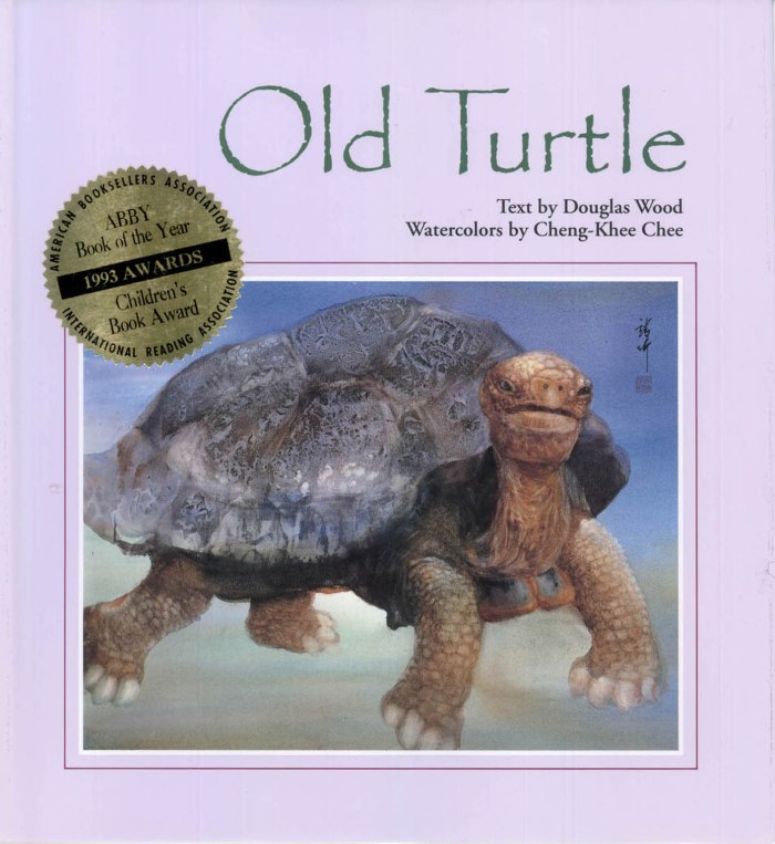 """A picture of the cover of one of my favorite childhood books, Old Turtle—originally subtitled """"and the Broken Truth"""". This lovely watercolor storybook expresses the basis of all my theology."""